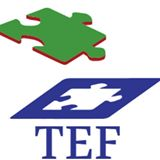TEF (Travail Emploi Formation)
